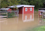 Donate to the 4-H Flood Relief Campaign